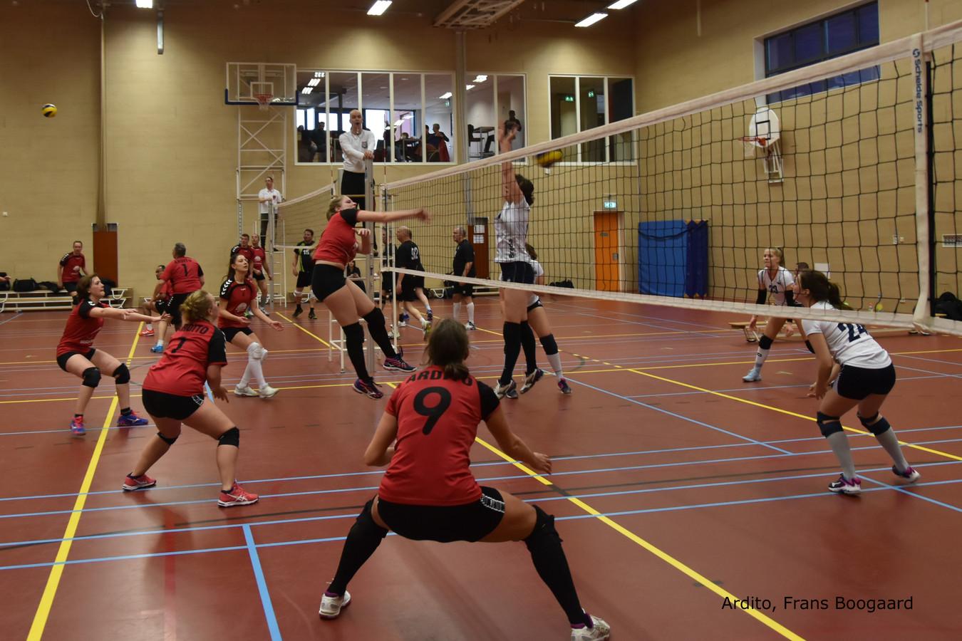 De volleybalsters van Ardito verloren thuis met 3-1 van koploper De Burgst 2.