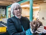 Na 40 jaar dierenverzorging krijgt Winanda een oorkonde