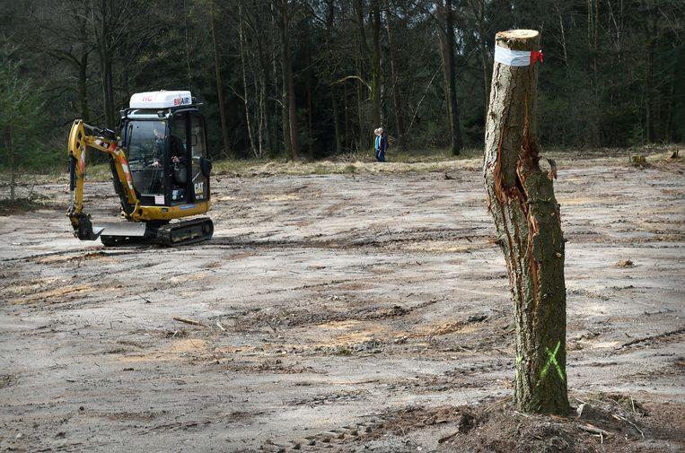 Ontbossing in Nederland  voor de aanleg van nieuwe natuur. Beeld Marcel van den Bergh / de Volkskrant