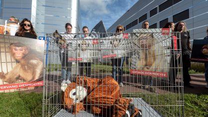 Dierenrechtenactivisten protesteren bij biotechbedrijf na gruwelbeelden uit Hamburg