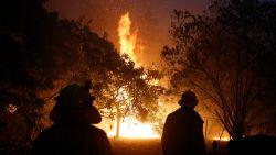 Al vier doden bij bosbranden in Australië