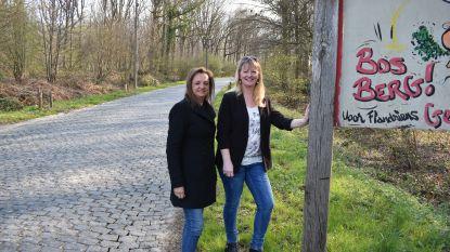Beheersplan maakt restauratie kasseien op legendarische Bosberg mogelijk
