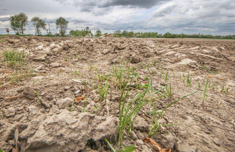 Na de droogte van vorige zomer is er nog niet voldoende neerslag gevallen om de reserves aan te vullen.