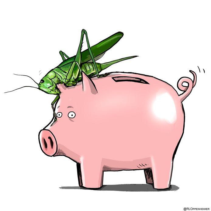 Oplichters uit de Gelderse regio maakte de afgelopen jaren miljoenen euro's buit door zich voor te doen als groene investeringen.