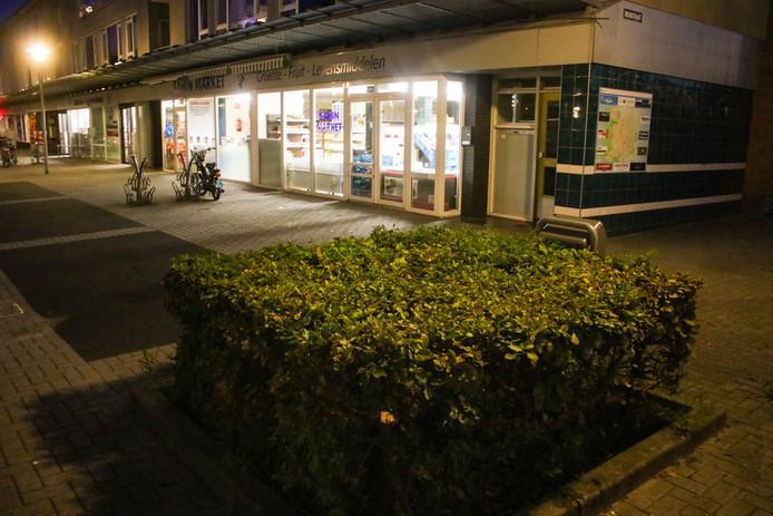 In deze struiken aan de Treubstraat in Apeldoorn vonden kinderen een vuurwapen.