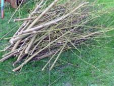 Snipperroute: gratis ophalen snoeihout in buitengebied Raalte