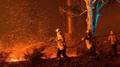 """Opnieuw twee doden door Australische bosbranden, regering zet 3.000 soldaten in op """"horrordag"""" met temperaturen boven 45 graden en vuurtornado's"""
