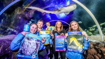 Verkiezingskoorts stijgt...in Sea Life