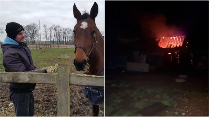 """Jeffrey (26) kan zijn paarden redden alvorens stal uitbrandt: """"Ze probeerden vergeefs de deuren open te duwen"""""""
