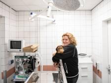 Dierenopvang 't Noordbroek in Almelo kan nu zelf hond met gebroken poot opereren