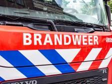Brandweer in de weer met bermbrand in Biddinghuizen