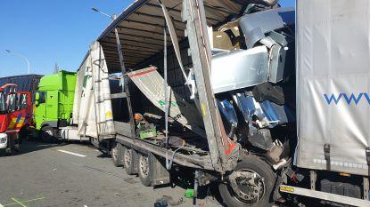 Opnieuw zwaar verkeersongeval in staart van file door grenscontroles op E19: één dode en twee gewonden