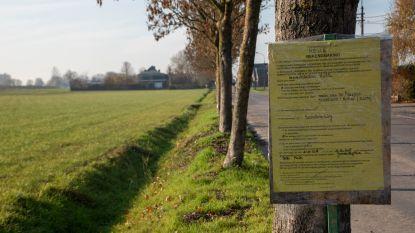 Ook Groen Melle protesteert tegen kap van 30 essen in de Scheldeweg