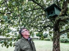 Uilen raken rustplaatsen kwijt maar hebben nieuwe nestkasten voor uitkiezen