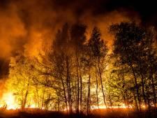 Zorgen om opkomsttijden brandweer: 'Buurse scoort erg slecht'