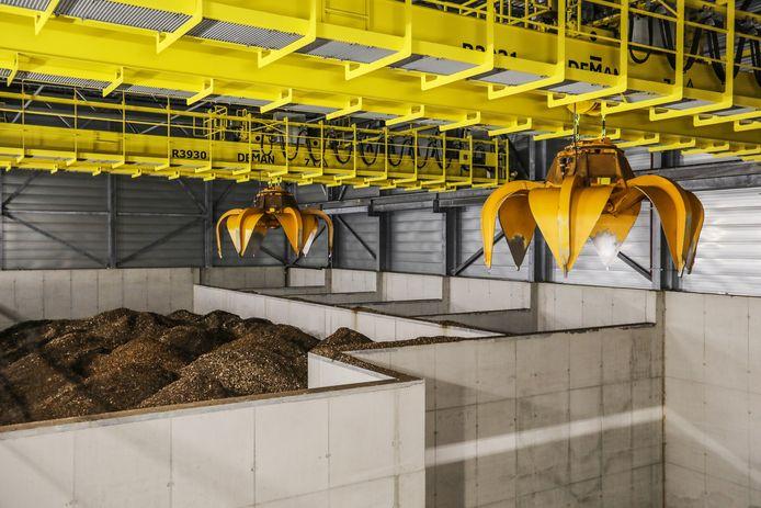 De biomassa ligt voor het grijpen.