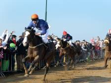 Metworstrennen onder genomineerden voor cultuurprijs van Boxmeer