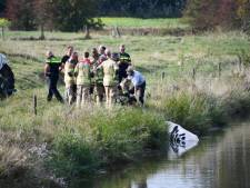 Brandweer en politie uitgerukt om koe uit sloot te redden
