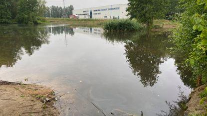 """Natuurpunt evalueert wateroverlast na hevige regenval: """"Slecht,  maar ook goed nieuws"""""""
