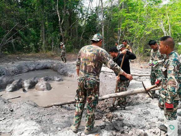 Met man en macht werkten rangers aan het bevrijden van de olifantjes.