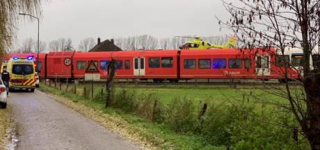 Treinen rijden weer na aanrijding met persoon bij Wehl