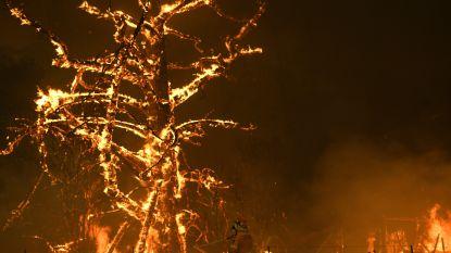 Duizenden vakantiegangers in Australische staat Victoria krijgen evacuatiebevel wegens oprukkende bosbranden