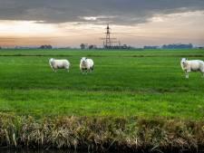 Minister Ollongren was en is tegen afdwingen van woningbouw in Utrechtse polder Rijnenburg