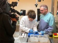 'Topdoks' ontleedt blindedarm bij laboratorium in Dordrecht