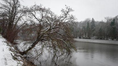 """Waarom het sneeuwtapijt plaatselijk beter meeviel dan verwacht: """"Sneeuw is moeilijk te voorspellen"""""""