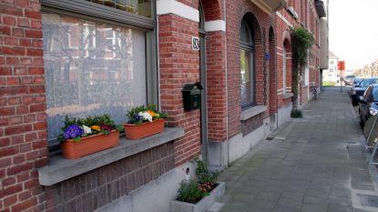 Assenede geeft geen subsidies voor geveltuintjes (maar hoopt dat de burgers het wel doen)