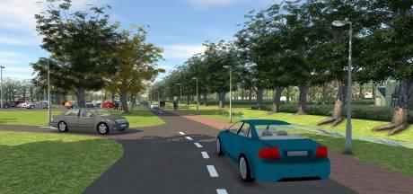 Nieuwe bomenlaan vanaf Rucphensebaan wordt entree crematorium Roosendaal