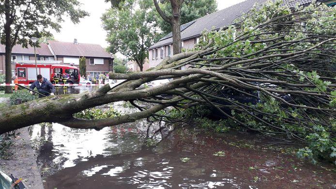 Een boom waaide om en de Wouwerbroek in Rijen Noord-Oost stond blank tijdens het noodweer van 26 juni.