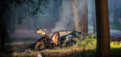 'Elektrische auto's onderdompelen na brand'