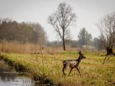 Weerribben-Wieden wil Nationaal Park van Wereldklasse worden