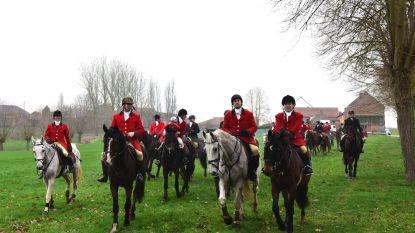 Riding Club Belgium in Vollezeelse velden