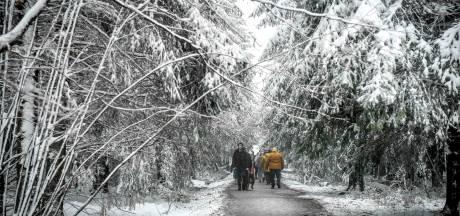 La neige revient en Ardenne ce week-end