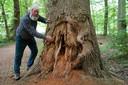Parkbeheerder Ton Schopman bij een boom in het wandelgebied 'De Eilandjes' die duidelijk betere tijden heeft gekend.