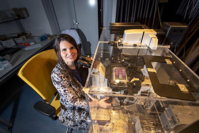 Verena Schwach gebruikt kloppende menselijke hartspiercellen die gekweekt zijn op een chip voor haar onderzoek naar hartritmestoornissen.