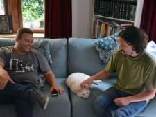 Vermiste kat Beer meldt zichzelf bij vriend van bezorgd baasje