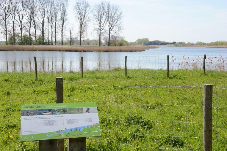 Het water in de Grote Geule zou al te zout geworden zijn voor gebruik als beregeningswater.