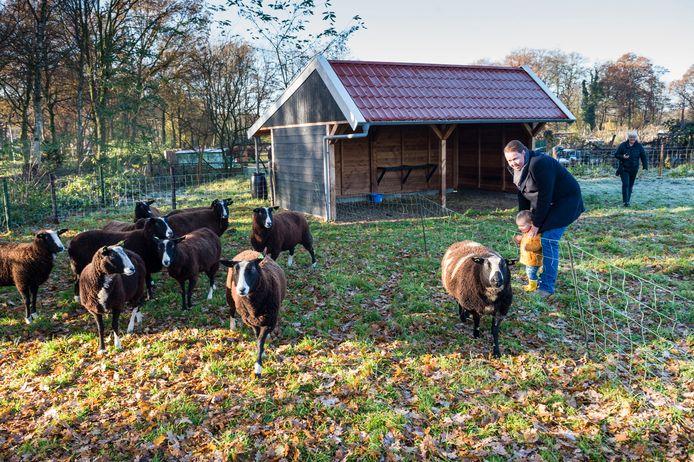 De schaapskooi op de Kinderboerderij Noord is geopend door wethouder Jeroen Diepemaat. Hij kreeg hulp van zijn zoonje Wout.