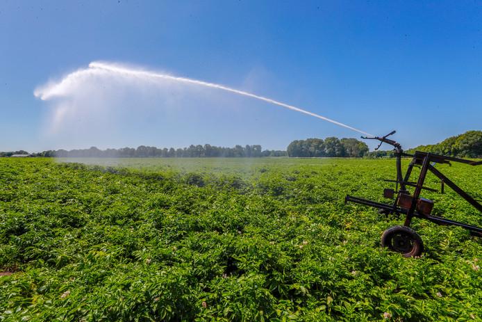 Vanaf donderdag geldt er een verbod op sproeien met oppervlaktewater.