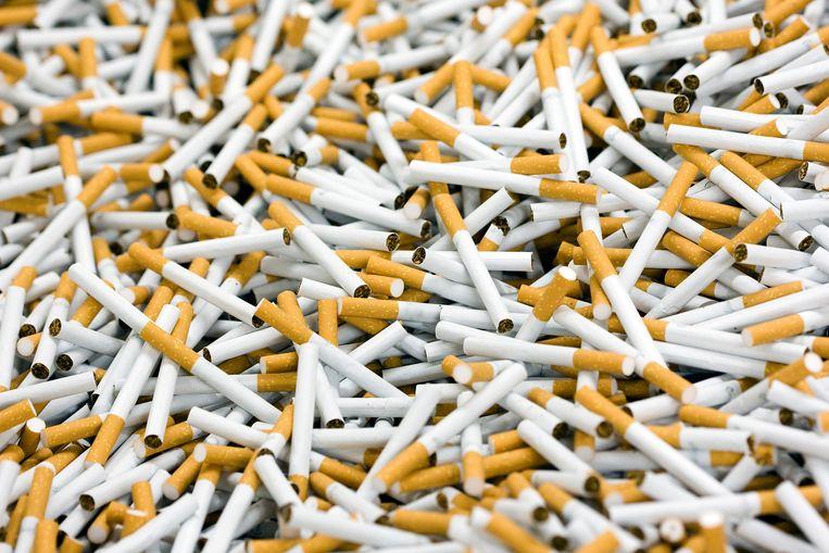 De sigarettenfabriek van Philip Morris in Bergen op Zoom.  Beeld ANP XTRA
