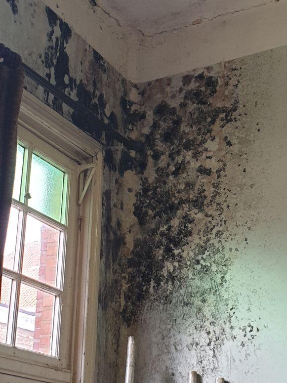 De muren in de lokalen hangen vol schimmel.