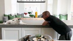 """Voor miljoenen euro schade aan huis van 'Malcolm in the Middle'-ster: """"Mijn kat heeft alles vernield"""""""