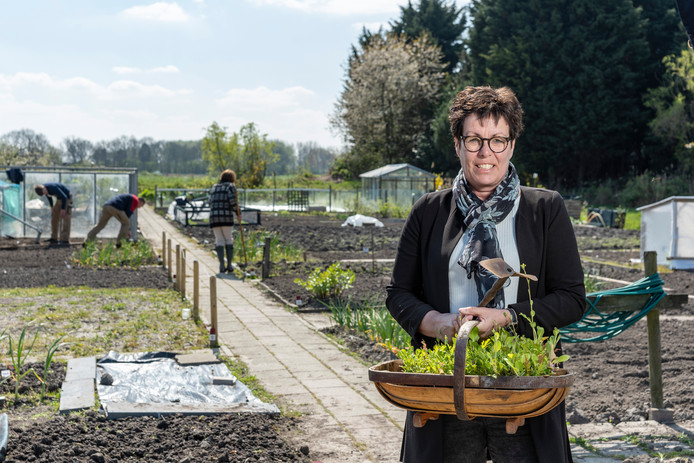 Carla Pouwer, terreincoördinator bij Zuid 1 van Kweeklust, schreef het jubileumboekje van de eeuw oude volkstuinvereniging.