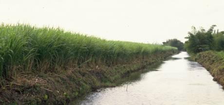 Zeker 21 doden in Mexico door giftige suikerrietdrank