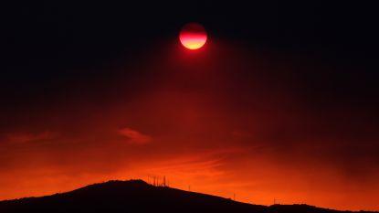 Bosbrand op Grieks eiland Evia onder controle