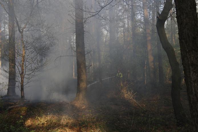 Bos bij Boxmeer staat vol met rook na weer een brand.