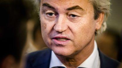 """Wilders verrast door bekering van voormalige rechterhand tot de islam: """"Alsof een vegetariër in slachthuis gaat werken"""""""
